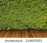 green leaves wall and wood... | Shutterstock . vector #114693331