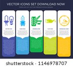 5 vector icons such as car...   Shutterstock .eps vector #1146978707