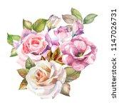 flowers illustration.watercolor ...   Shutterstock . vector #1147026731