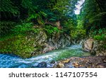 mountain forest river canyon... | Shutterstock . vector #1147107554