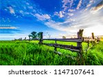 Summer green rural farm fence...