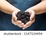 closeup of a girl holding a...   Shutterstock . vector #1147114454