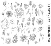 vector collection of hand drawn ... | Shutterstock .eps vector #1147118354