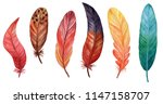 set of bird feathers isolated... | Shutterstock . vector #1147158707