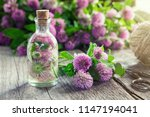 clover tincture or infusion and ... | Shutterstock . vector #1147194041