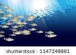 school of pink salmon fish.... | Shutterstock .eps vector #1147248881