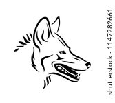 coyote animal   isolated vector ... | Shutterstock .eps vector #1147282661