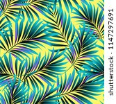 palm. pattern from tropical... | Shutterstock .eps vector #1147297691