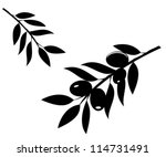 vector olive branches...