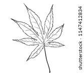 vector black sketch...   Shutterstock .eps vector #1147412834