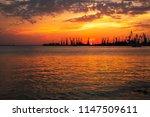 beautiful landscape with fiery...   Shutterstock . vector #1147509611