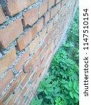 wall of red brick. green grass. ... | Shutterstock . vector #1147510154