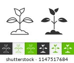 branch leaves black linear and... | Shutterstock .eps vector #1147517684