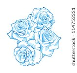 roses  hand drawn  | Shutterstock . vector #114752221