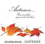 autumn maple leaf vector frame...