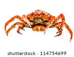 A Spider Crab On A White...
