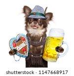 bavarian dachshund or sausage ... | Shutterstock . vector #1147668917