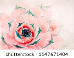 bright red pink cactus... | Shutterstock . vector #1147671404