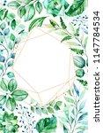 watercolor green illustration... | Shutterstock . vector #1147784534