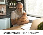 Stock photo elderly man with his cat working on laptop smiling looking at screen 1147787894