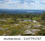 finnish lapland summer scenery... | Shutterstock . vector #1147791767