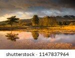 dramatic winter light over... | Shutterstock . vector #1147837964