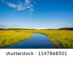 wetlands in egg harbor township ... | Shutterstock . vector #1147868501