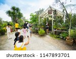 nakhon pathom  thailand   july...   Shutterstock . vector #1147893701