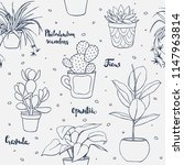 vector seamless home plants... | Shutterstock .eps vector #1147963814