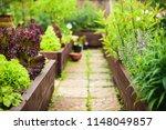vegetable garden with raised... | Shutterstock . vector #1148049857