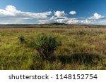 beautiful cerrado landscape and ... | Shutterstock . vector #1148152754