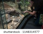 los angeles  california  usa ... | Shutterstock . vector #1148314577