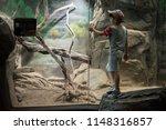 los angeles  california  usa ... | Shutterstock . vector #1148316857