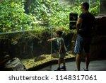 los angeles  california  usa ... | Shutterstock . vector #1148317061