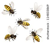 set of bees isolated on white | Shutterstock . vector #114833869