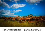 car waste. rusty cars on the... | Shutterstock . vector #1148534927