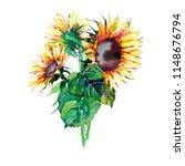 bright graphic wonderful...   Shutterstock . vector #1148676794