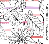tropical  modern stripes motif. ... | Shutterstock .eps vector #1148686847
