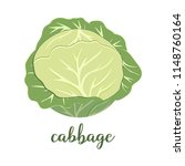 green cabbage isolated on white ...   Shutterstock .eps vector #1148760164