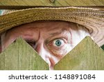 A Curious Neighbor Looks Over ...
