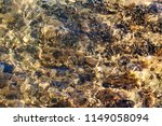 the sea stony bottom in a clear ... | Shutterstock . vector #1149058094