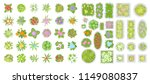 Vector Set. Flowers And Flower...