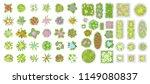 vector set. flowers and flower... | Shutterstock .eps vector #1149080837