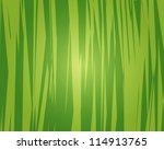 jungle background. jungle... | Shutterstock .eps vector #114913765