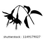 Fuchsia Flower Silhouette ...