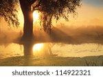 Sunbeams In Misty Morning On...