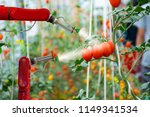 smart robotic farmers in... | Shutterstock . vector #1149341534