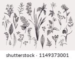 set with spring and summer... | Shutterstock .eps vector #1149373001