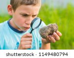 teen boy with a magnifying... | Shutterstock . vector #1149480794