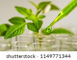 pipette over test tube dropping ... | Shutterstock . vector #1149771344